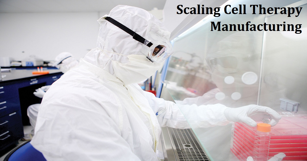 Scaling Cell Therapy Manufacturing